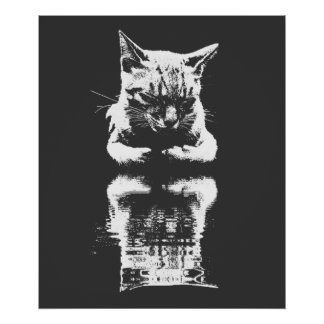 Sleeping Cat Monochrome Reflection Poster