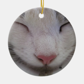 Sleeping Cat Round Ceramic Decoration