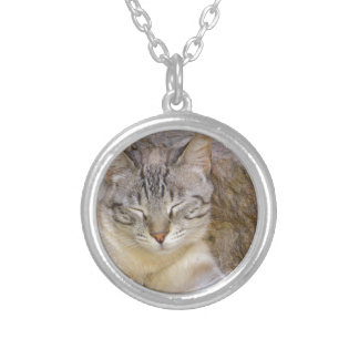 Sleeping cat round pendant necklace