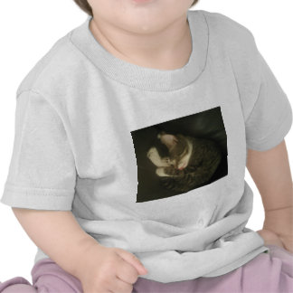 Sleeping Cat with Tongue Haniging Out Tshirts