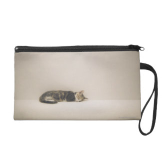 Sleeping cat wristlet