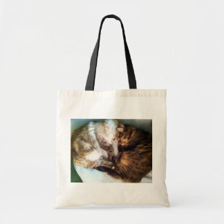 Sleeping cats tote bag