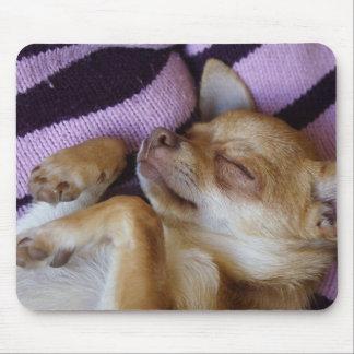 Sleeping Chihuahua Mouse Pad