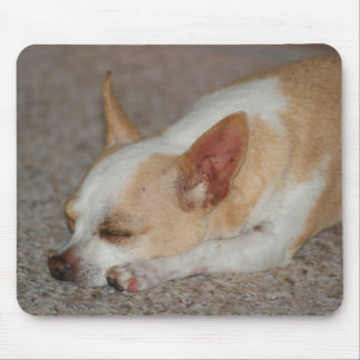 Sleeping Chihuahua Mouse Pad