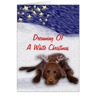 Sleeping Chocolate Lab With Antlers Photograph Greeting Card