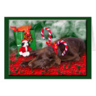 Sleeping Chocolate Lab With Peppermint Stick Hat Card