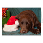 Sleeping Chocolate Lab With Santa Hat Photograph Card
