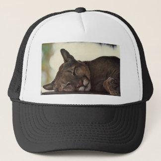 Sleeping Cougar Hat