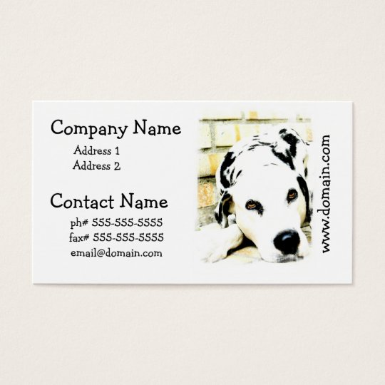 Sleeping Dalmatian Business Cards