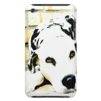 Sleeping Dalmatian iTouch Case Barely There iPod Cover