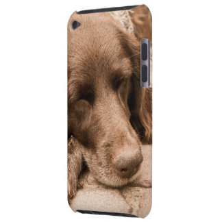 Sleeping Dog Barely There iPod Covers