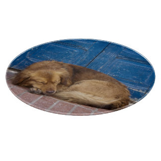 Sleeping dog, Essaouira, Morocco Cutting Board