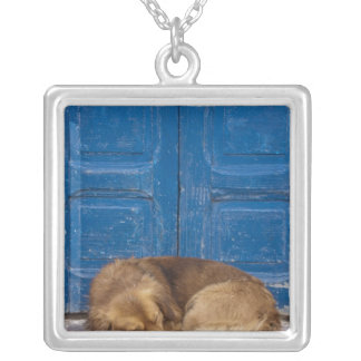 Sleeping dog, Essaouira, Morocco Silver Plated Necklace