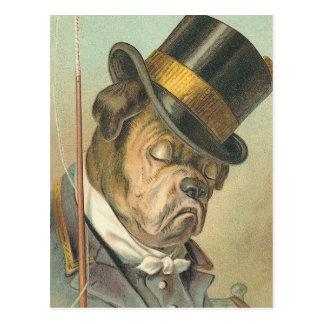 """Sleeping Dog"" Vintage Post Cards"