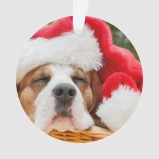 Sleeping Dog Weared To Santa Hat Ornament