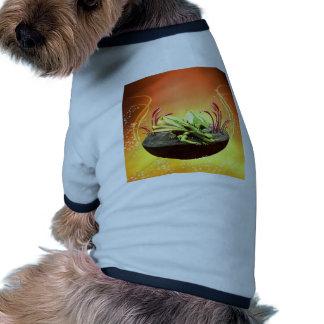 Sleeping dragon on a rock pet clothes