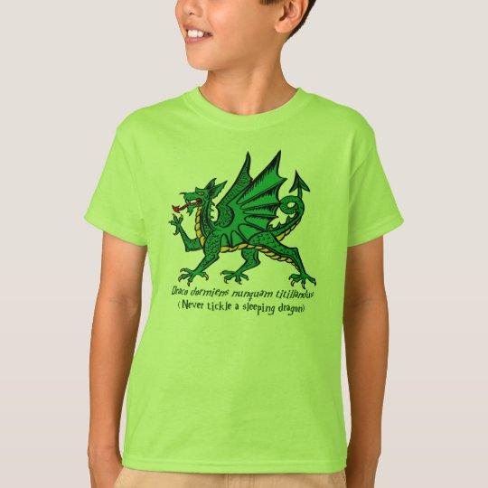 Sleeping Dragon Shirt