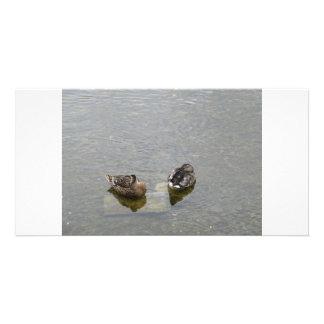 Sleeping Ducks Personalized Photo Card
