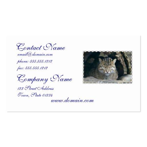 Sleeping Fishing Cat Business Card