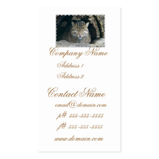 Sleeping Fishing Cat Business Cards