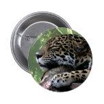 Sleeping Florida jaguar , light green frond back Button