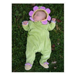 Sleeping flower baby postcard