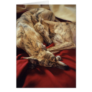 Sleeping Hounds Greeting Card