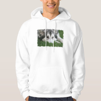 Sleeping Husky Men's Hooded Sweatshirt