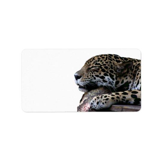Sleeping Jaguar no background Address Label
