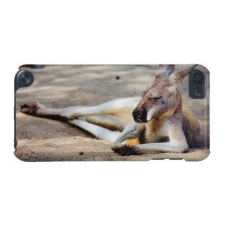 Sleeping Kangaroo, Wildlife Animal Photography iPod Touch 5G Cases