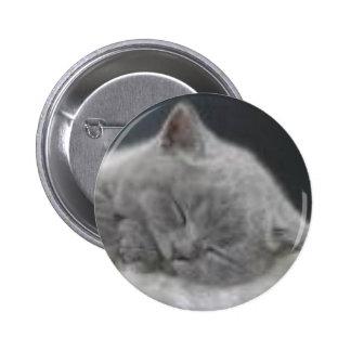 sleeping Kitten 6 Cm Round Badge