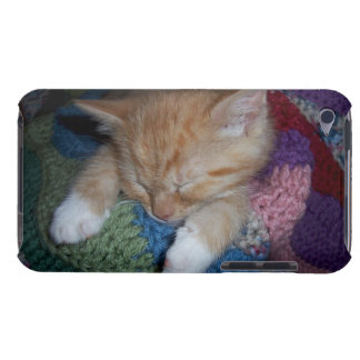 Sleeping Kitten Barely There iPod Covers