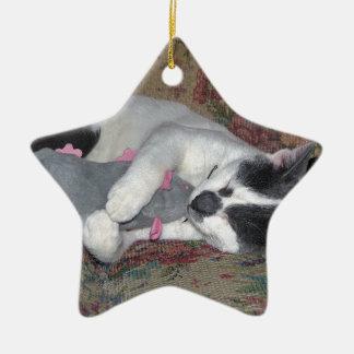 Sleeping Kitten Ceramic Star Decoration