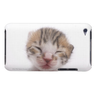 Sleeping kitten, close-up of head barely there iPod case