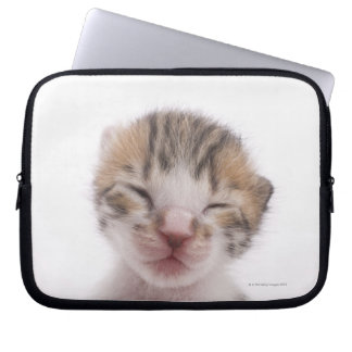 Sleeping kitten, close-up of head laptop sleeve
