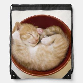 Sleeping Kitten Drawstring Bag