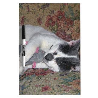 Sleeping Kitten Dry Erase Board