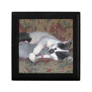 Sleeping Kitten Gift Box