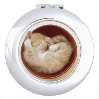 Sleeping kitten in simple red bowl on white makeup mirror