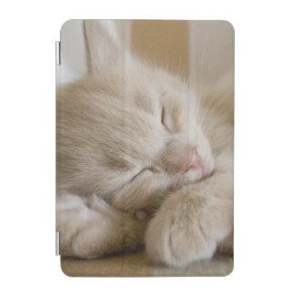 Sleeping Kitten iPad Mini Cover