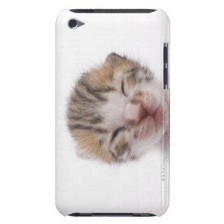 Sleeping kitten iPod touch cases