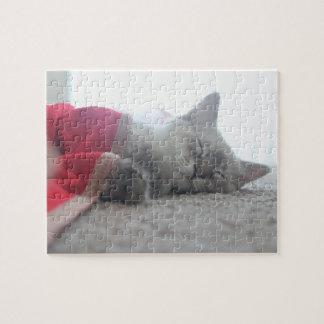 Sleeping Kitten Jigsaw Puzzle