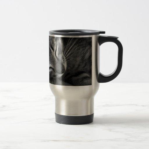 Sleeping Kitten Coffee Mug