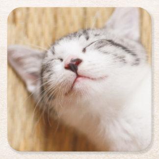 Sleeping Kitten On Tatami Mat Square Paper Coaster