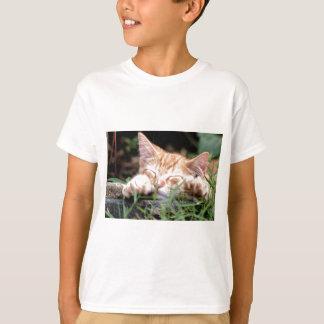 Sleeping Kitten Tee Shirt