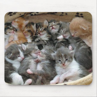 Sleeping Kittens Mouse Pad
