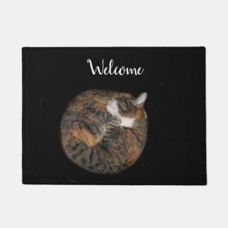 Sleeping kitty doormat