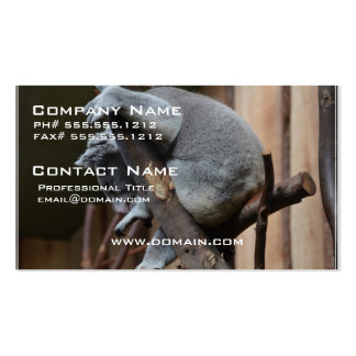 Sleeping Koala Bear Double-Sided Standard Business Cards (Pack Of 100)