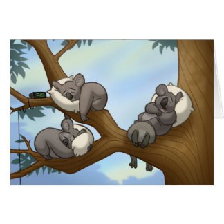 Sleeping Koala Card
