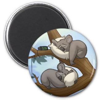 Sleeping Koala Magnet